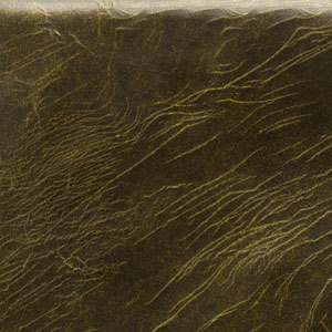 Tudor Birch